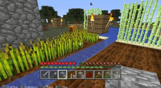 En blivande åker! Färdigt vete till vänster och åkermark till höger.