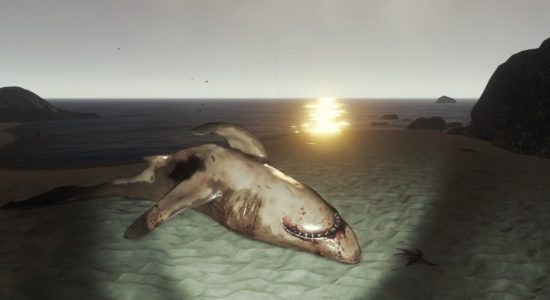 Ehhhh....äter kannibaler haj eller är det något annat i görningen?